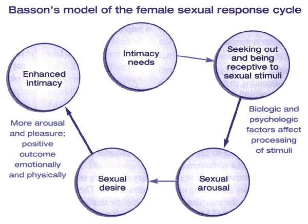 sexual arousal and response The sexual response cycle refers to a series of physical and emotional phases that occur when an individual becomes aroused or engages in sexually stimulating activities.