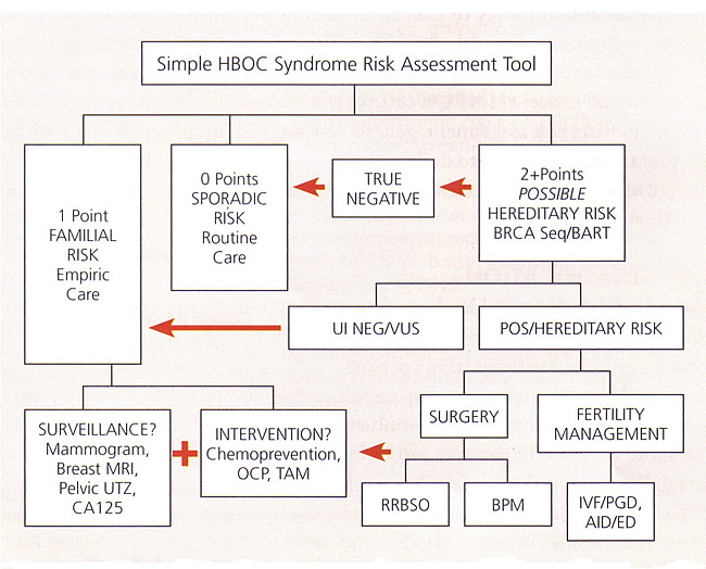Simple HBOC Syndrome Risk Assessment Tool